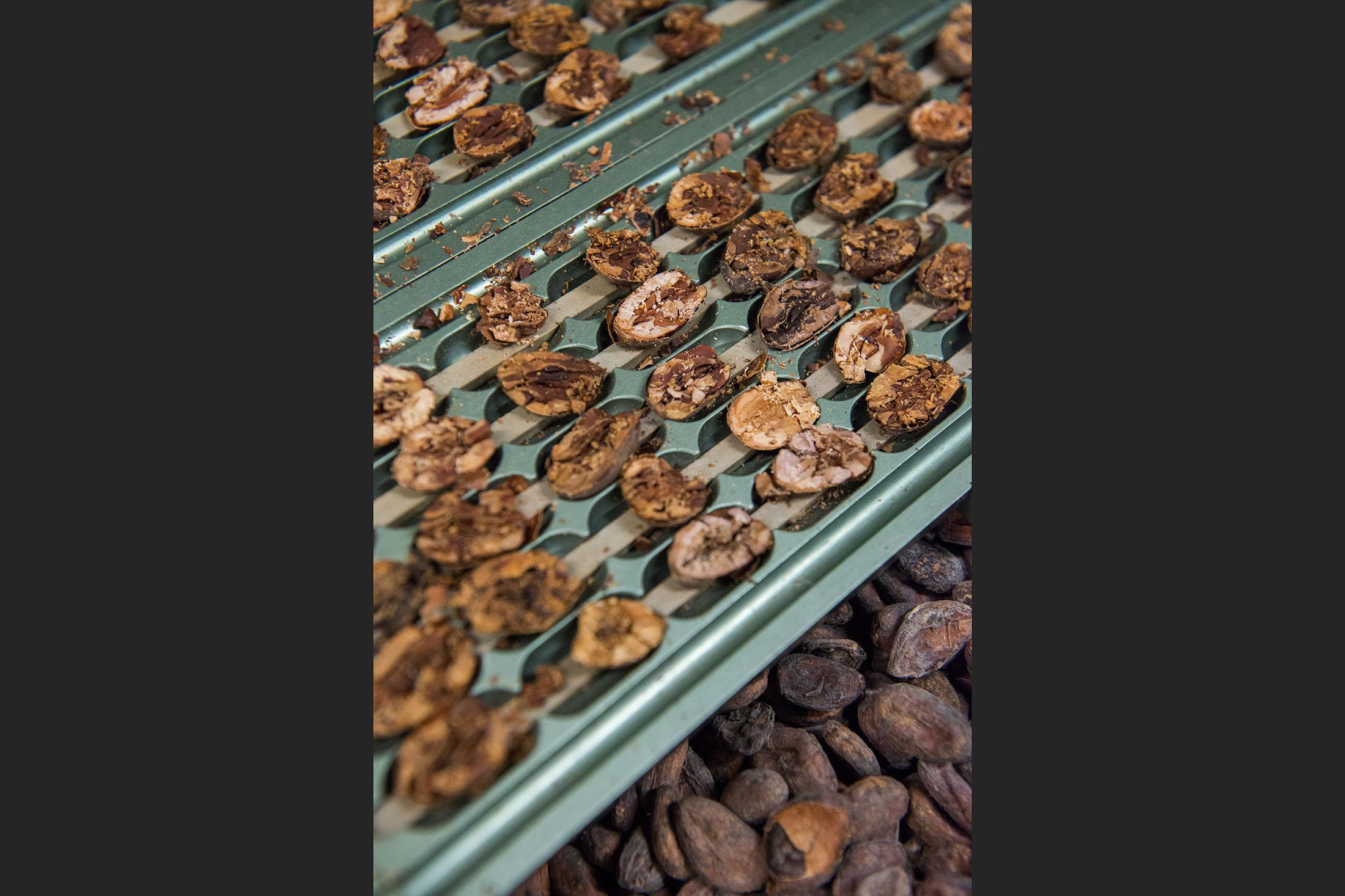 Cea mai buna ciocolata din lume se face in Italia, Toscana