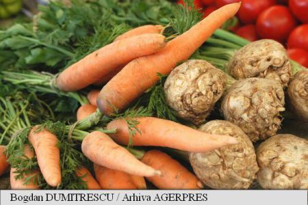 Retete vechi de 100 de ani: Galusti (bulete) de branza proaspata si Budinca de morcovi